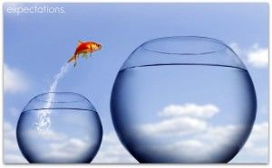 Goldfish-Jump-Out-Of-Bowl-2-expectations